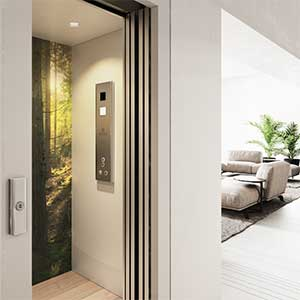 electrical home elevator
