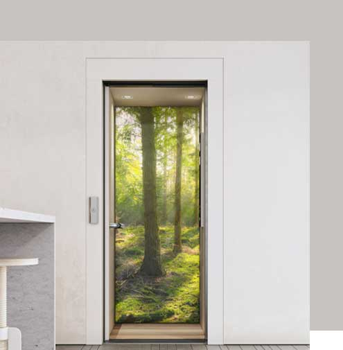 electric home lift